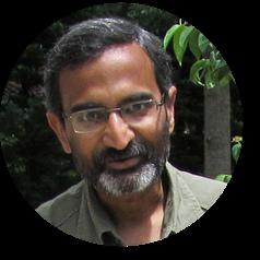 SV Srinivas